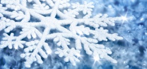 neige-flocon_710x338